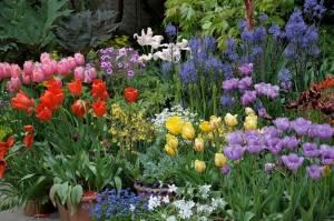 Gärten In Cornwall garten groene de termine gartenreisen nach april bis